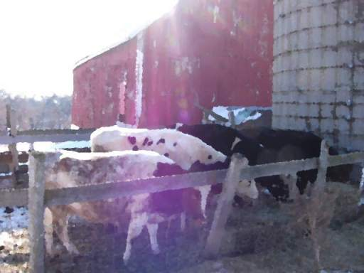 Cows Supping at the Flannery Farm (Michael Plishka, 2009)